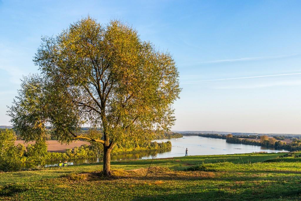 Пансионаты для престарелых в Рязанской области